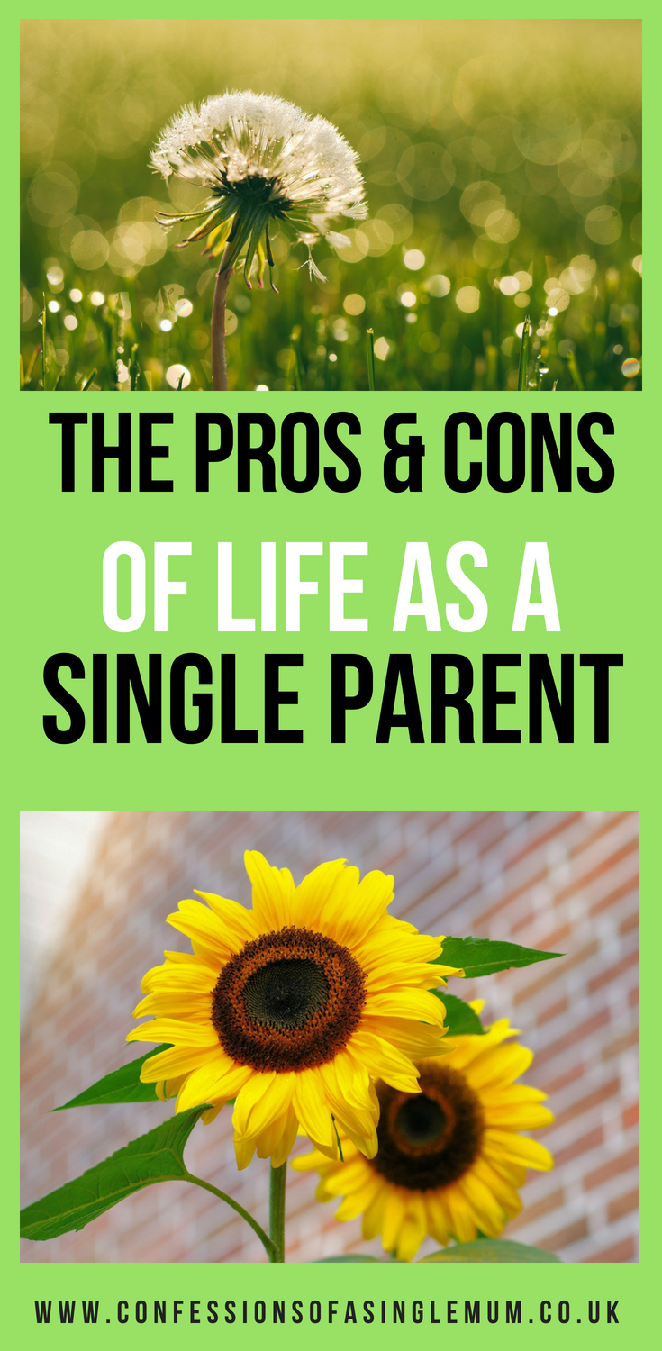 Pros and cons of being a single mother