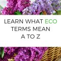 LEARN WHAT ECO TERMS MEAN A TO Z 1