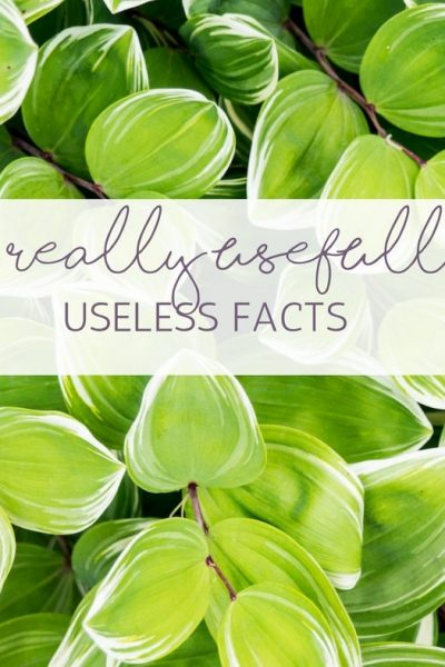 15 Really Usefully Useless Facts