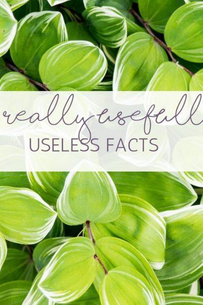 15 Really Usefully Useless Facts