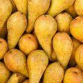 pears 533x800