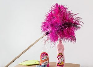 feather duster 709124 960 720