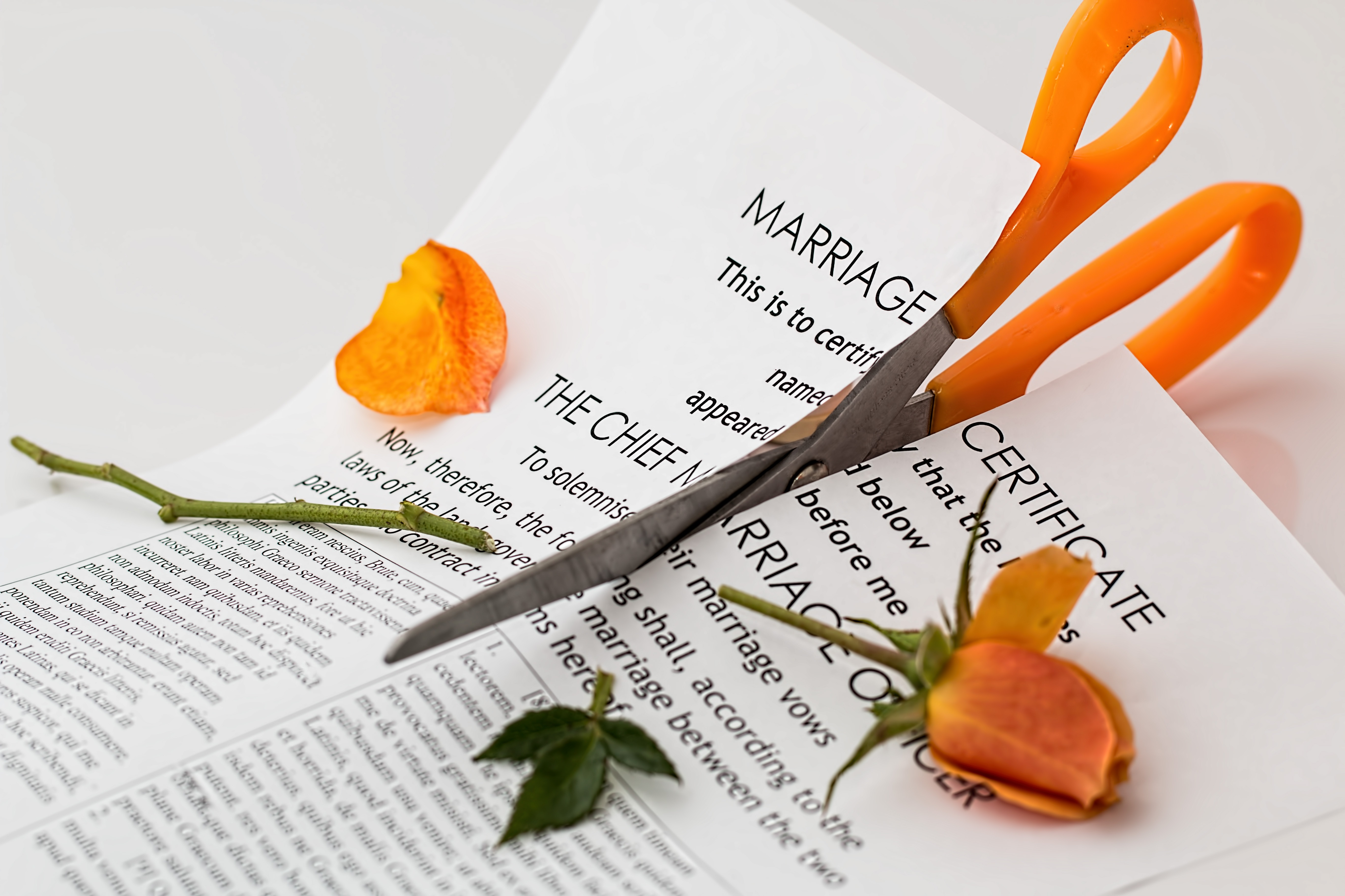 What You Can Expect When You Go Through A Divorce (And How To Cope With It!)