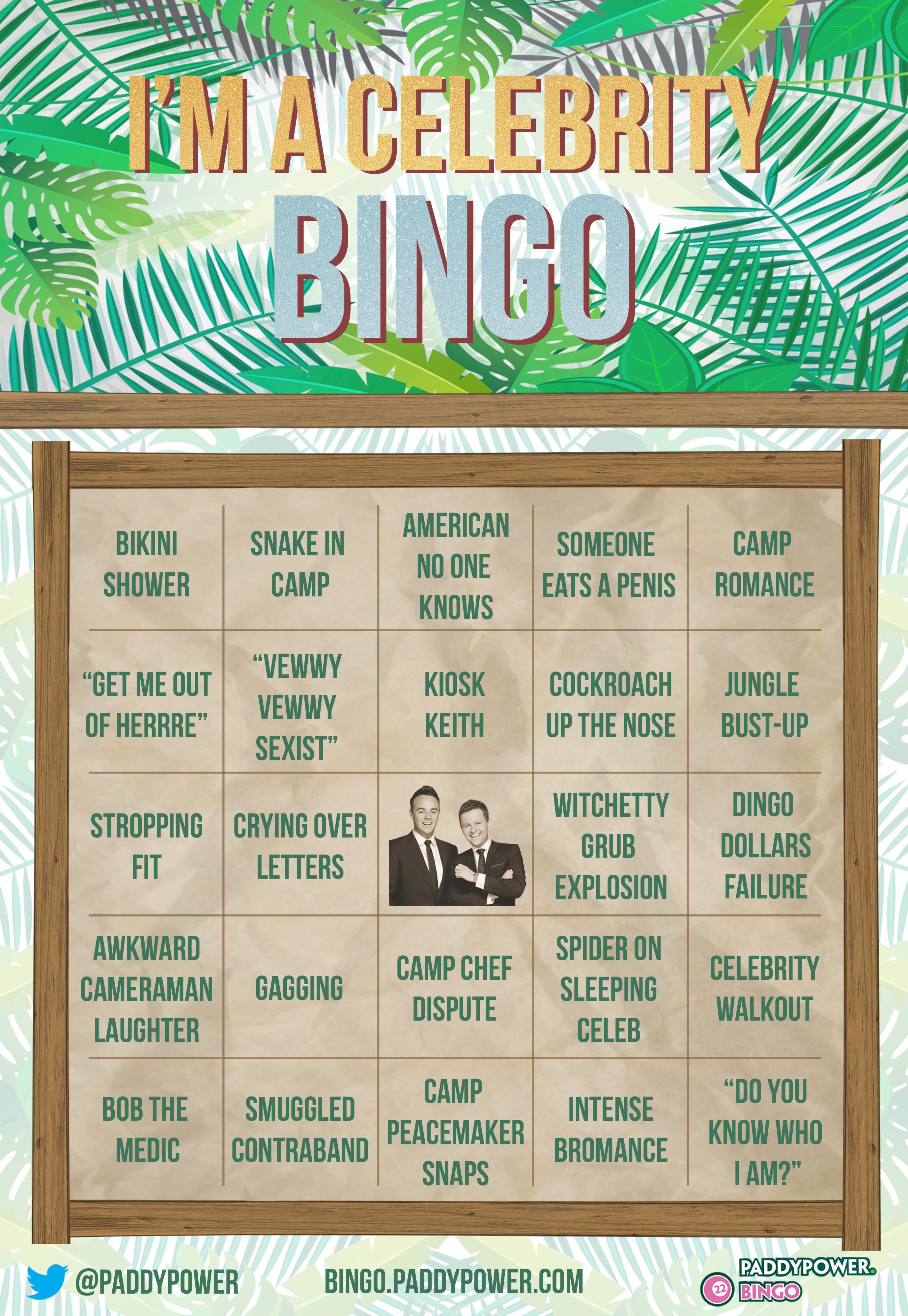 Im A Celeb Bingo Card