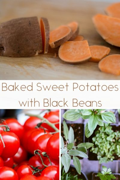 Baked Sweet Potatoes with Black Beans