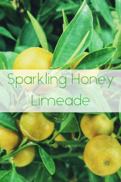 Sparkling Honey Limeade