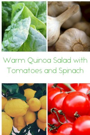 Warm Quinoa Salad with Tomatoes and Spinach