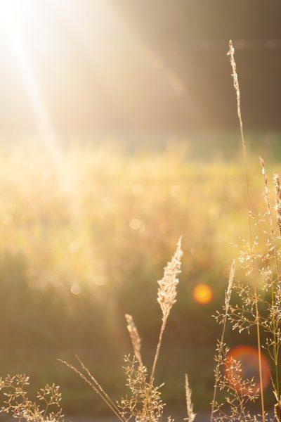 Enjoy The Sun With Inexpensive Fun