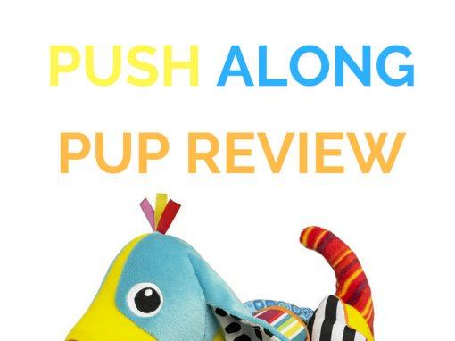 Lamaze Pippin' The Push Along Pup Review